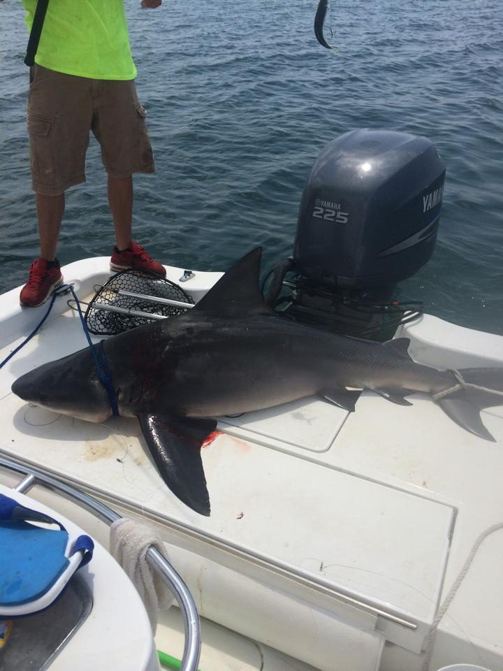 Hot Spots Report for Pensacola Fishing Charters June 2014
