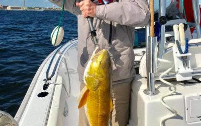 Hot Spots Report for Pensacola Fishing Charters January 2018