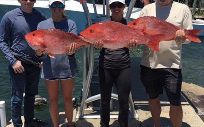 Hot Spots Report for Pensacola Fishing Charters May 2017